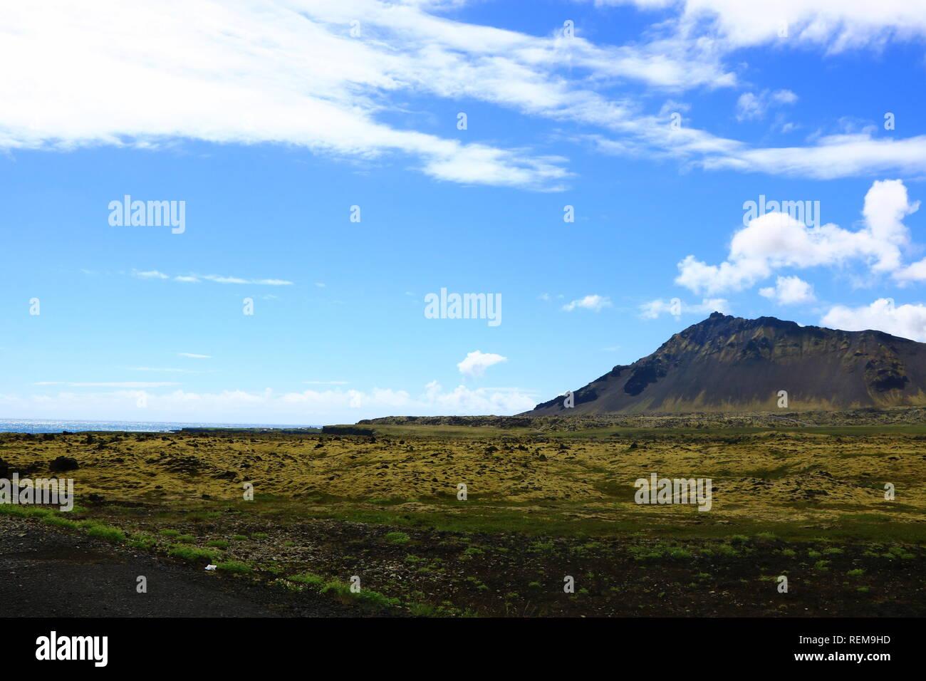 Lavafelder mit Moos in Island - Stock Image