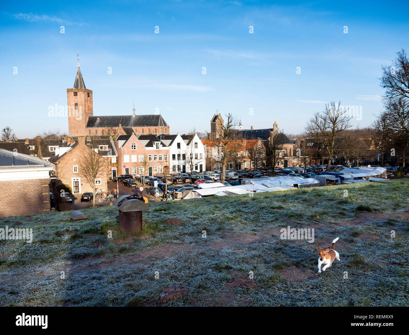 large church of naarden vesting in the netherlands with dog on the foreground on sunny winter day - Stock Image