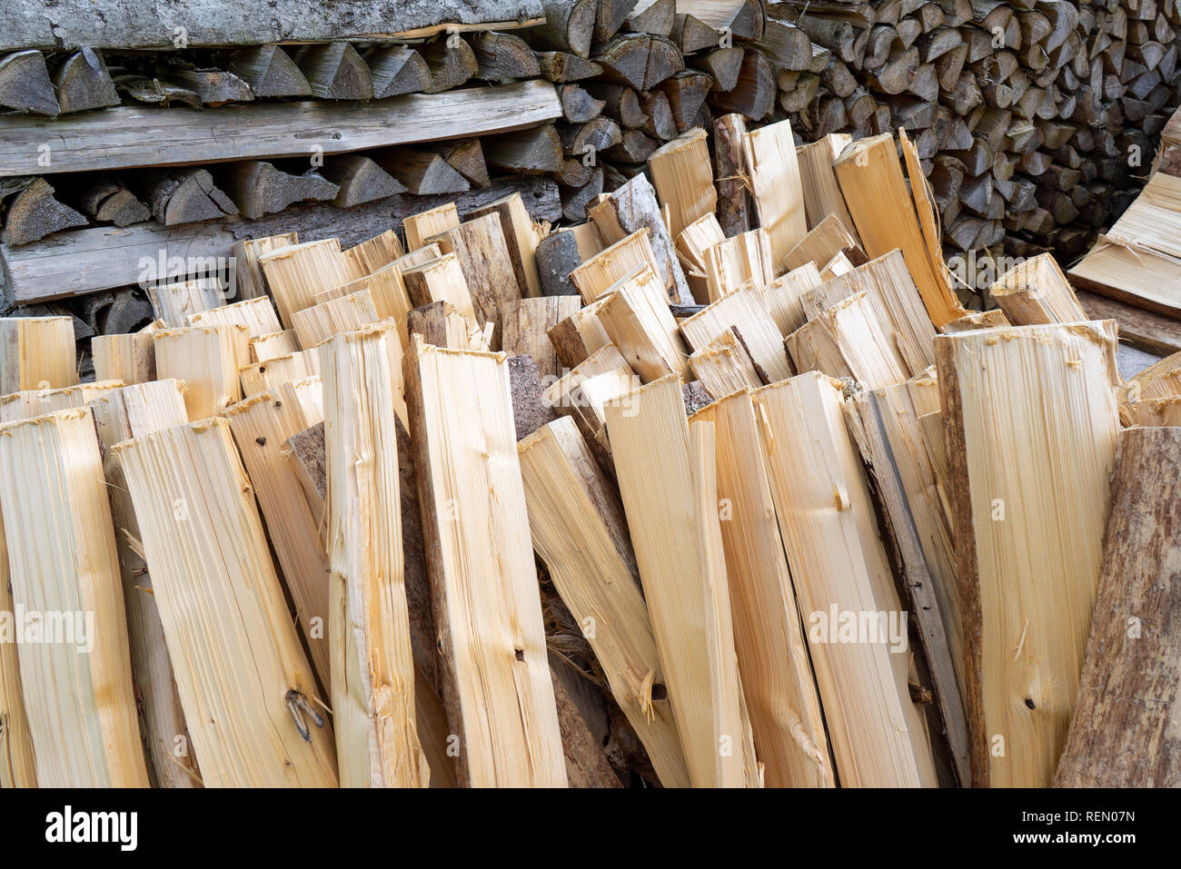 Upright, freshly processed firewood - Stock Image