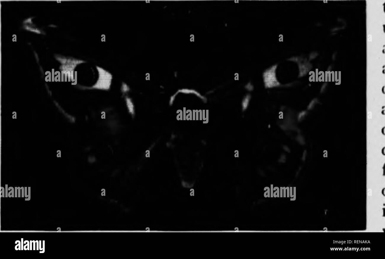 Mi Lu Black and White Stock Photos & Images - Alamy