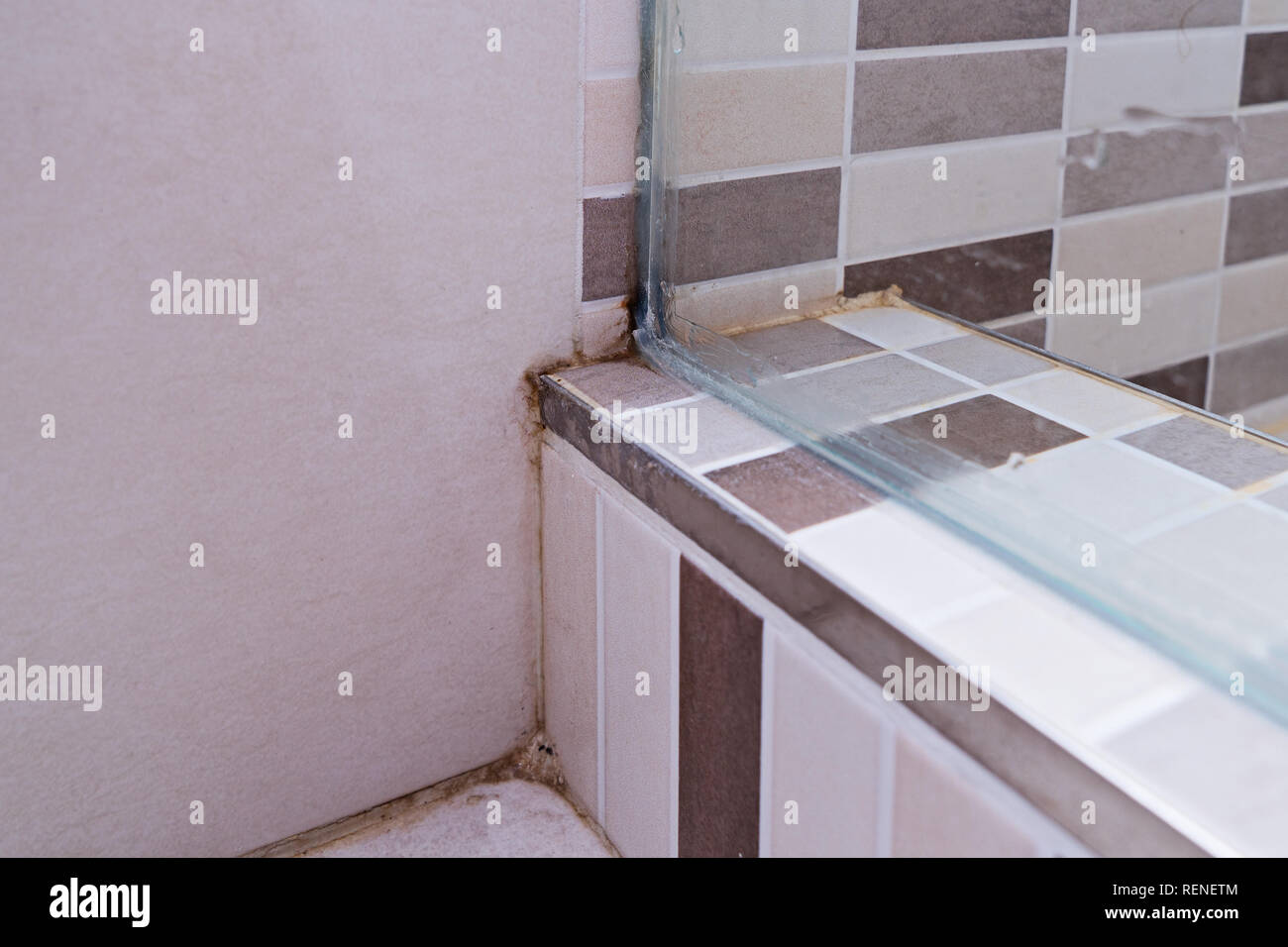 Black mold on tile in shower cabin. Poor ventilation, humidity, condensation cause fungus on the walls, close up. Unhygienic dirty mildew in bathroom  - Stock Image