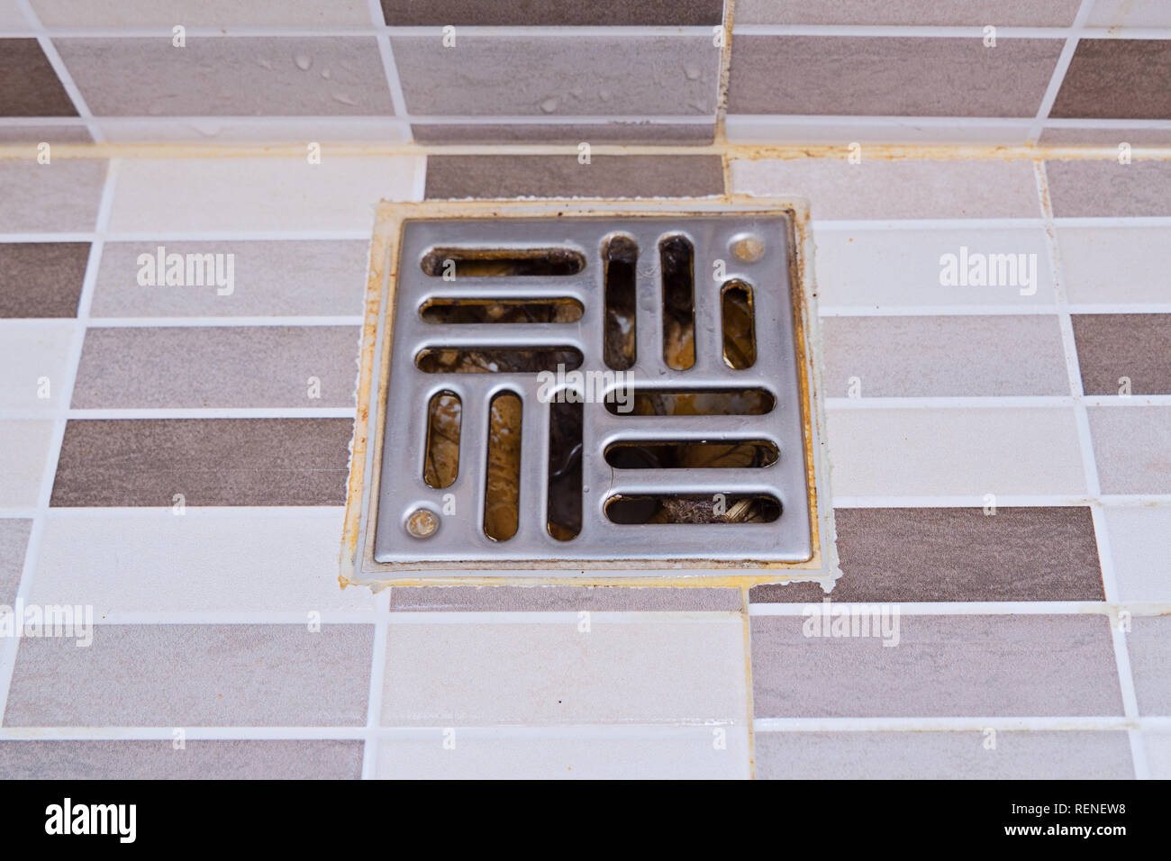Dirty stainless steel bath shower drain in modern style. Wet shower drain with unhygienic trash, top view - Stock Image