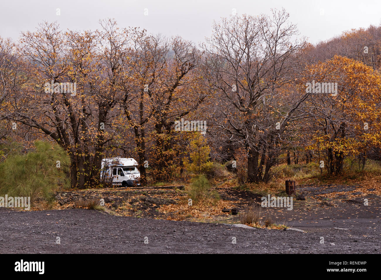 Camping Caravan Trailer Parked Hidden In Beautiful Autumn Tree