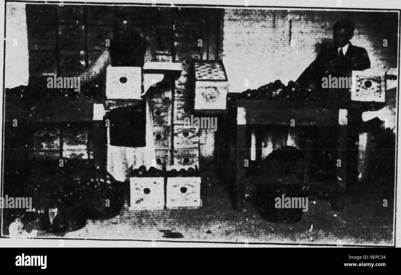 Caisse De Pomme Vide caisses stock photos & caisses stock images - page 3 - alamy
