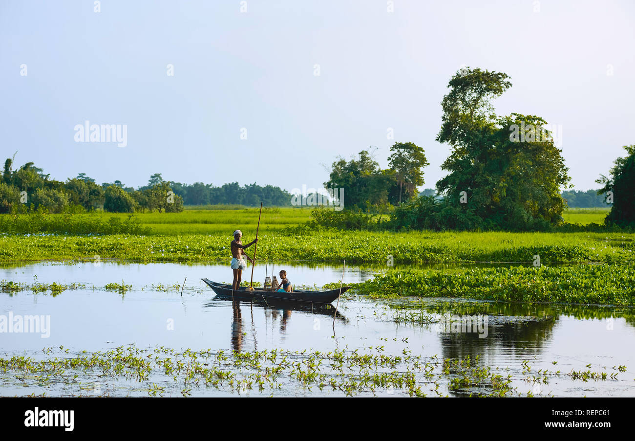 Father and son set nets and traps for shell fish at dawn in a lagoon in their traditional dugout wooden boat in monsoon season, Majuli, Assam, India. Stock Photo