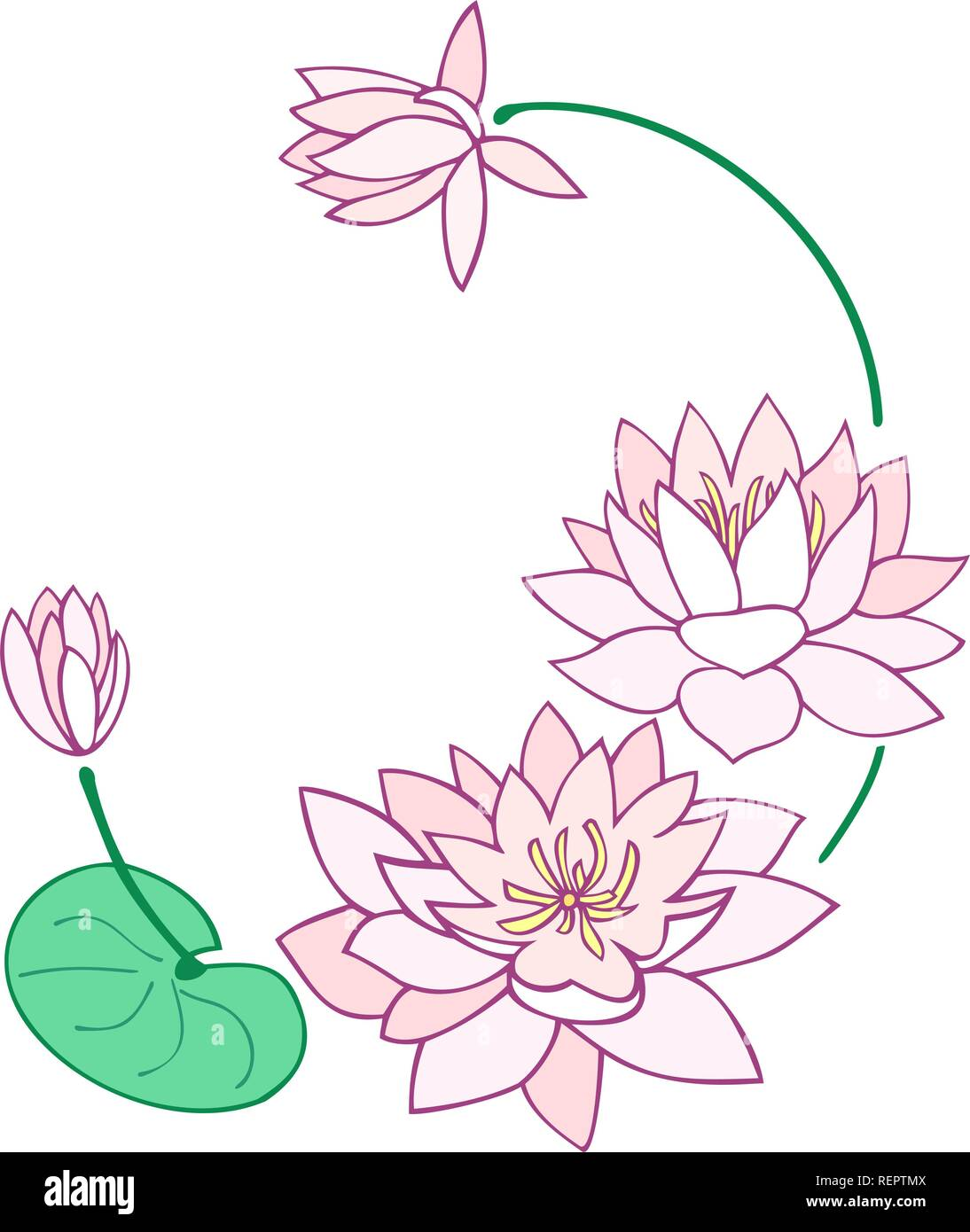 Water Lily Flowers Border Design Stock Vector Art Illustration