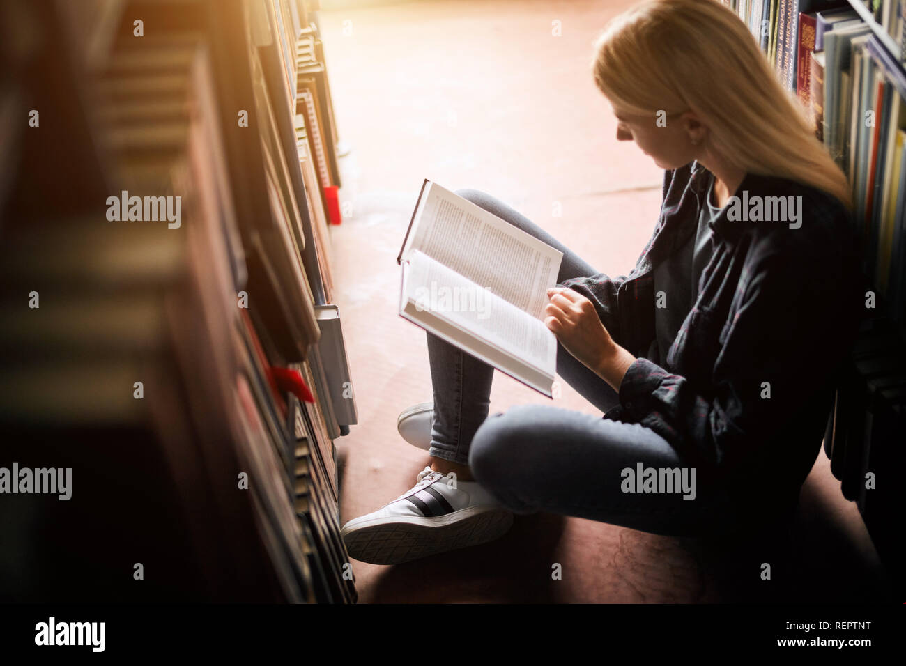 Young female student studying in the library Higher education. Student life - Stock Image