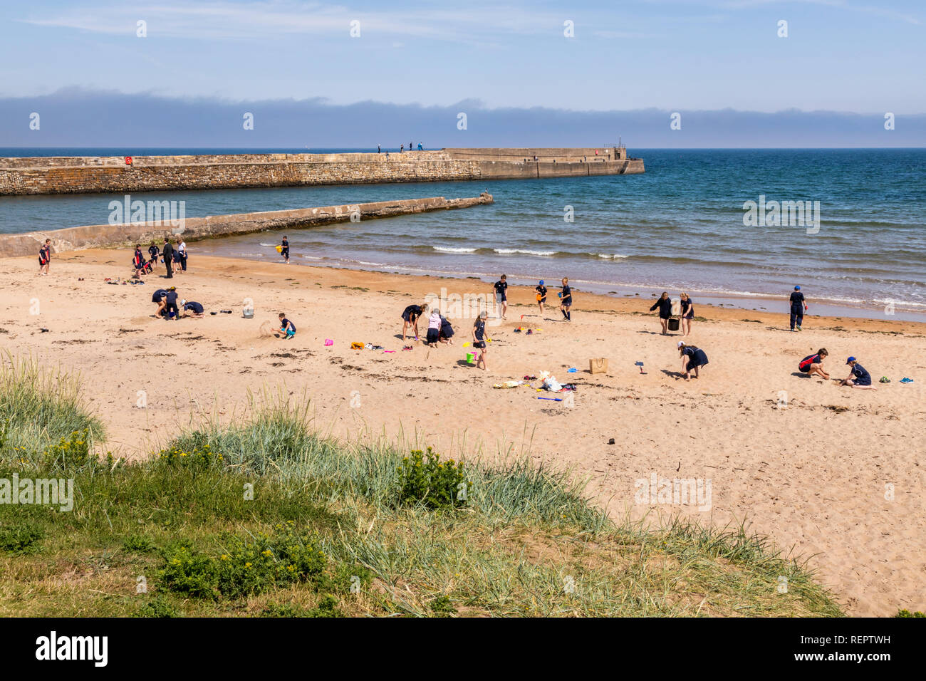 Children from a local primary school playing on the beach beside the harbour at St Andrews, Fife, Scotland UK - Stock Image