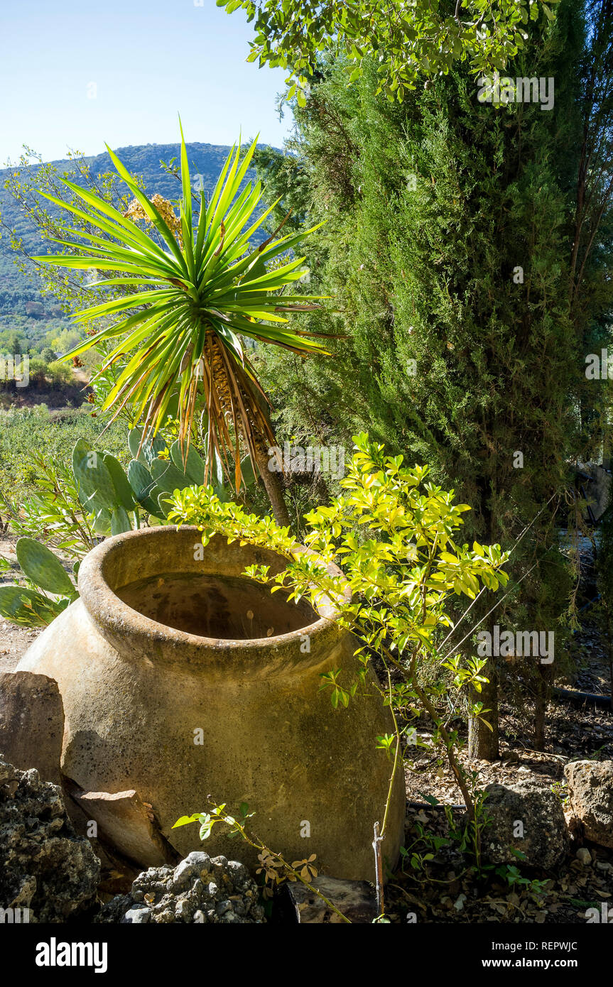 Olive oil urn in countryside Andalucia, Spain Stock Photo