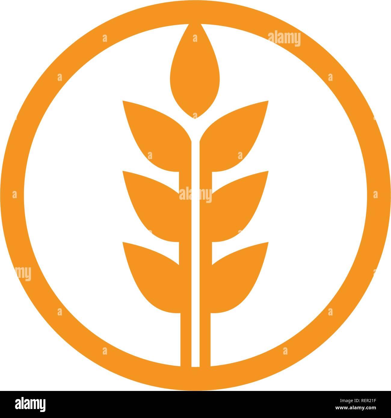 Agriculture wheat Logo Template,healthy life logo vector icon design - Stock Vector