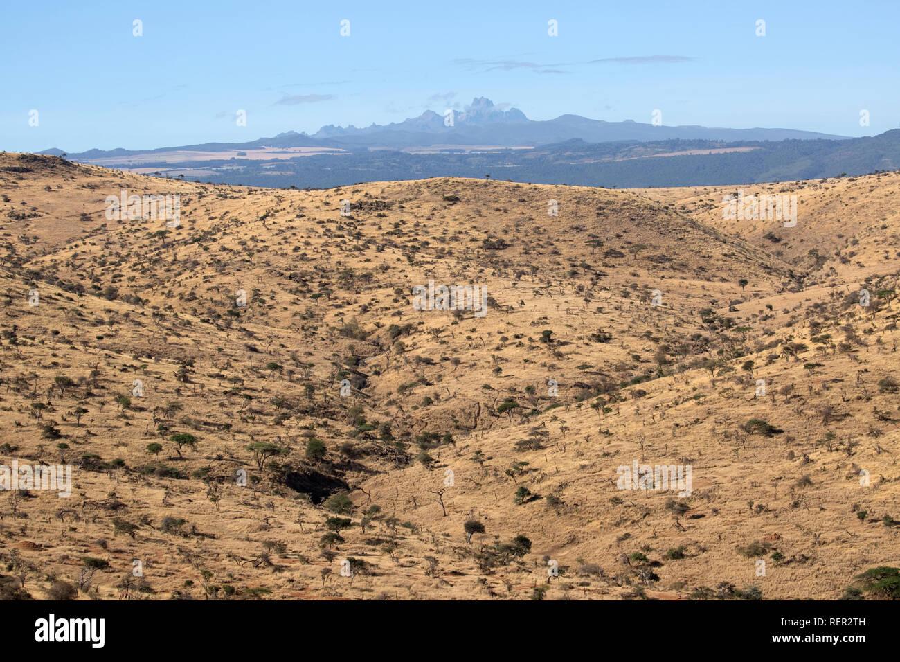 Semi arid scrub with Mount Kenya from Lewa Wildlife Conservancy Kenya - Stock Image