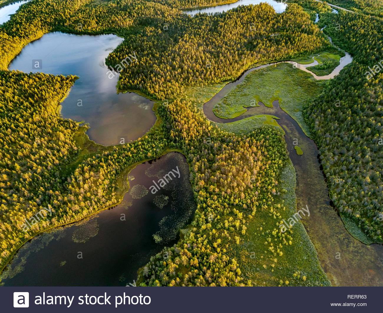 Drone view, aerial photo of Vuontisjärvi, small lakes and meanders, river loops in boreal arctic forest with conifers - Stock Image