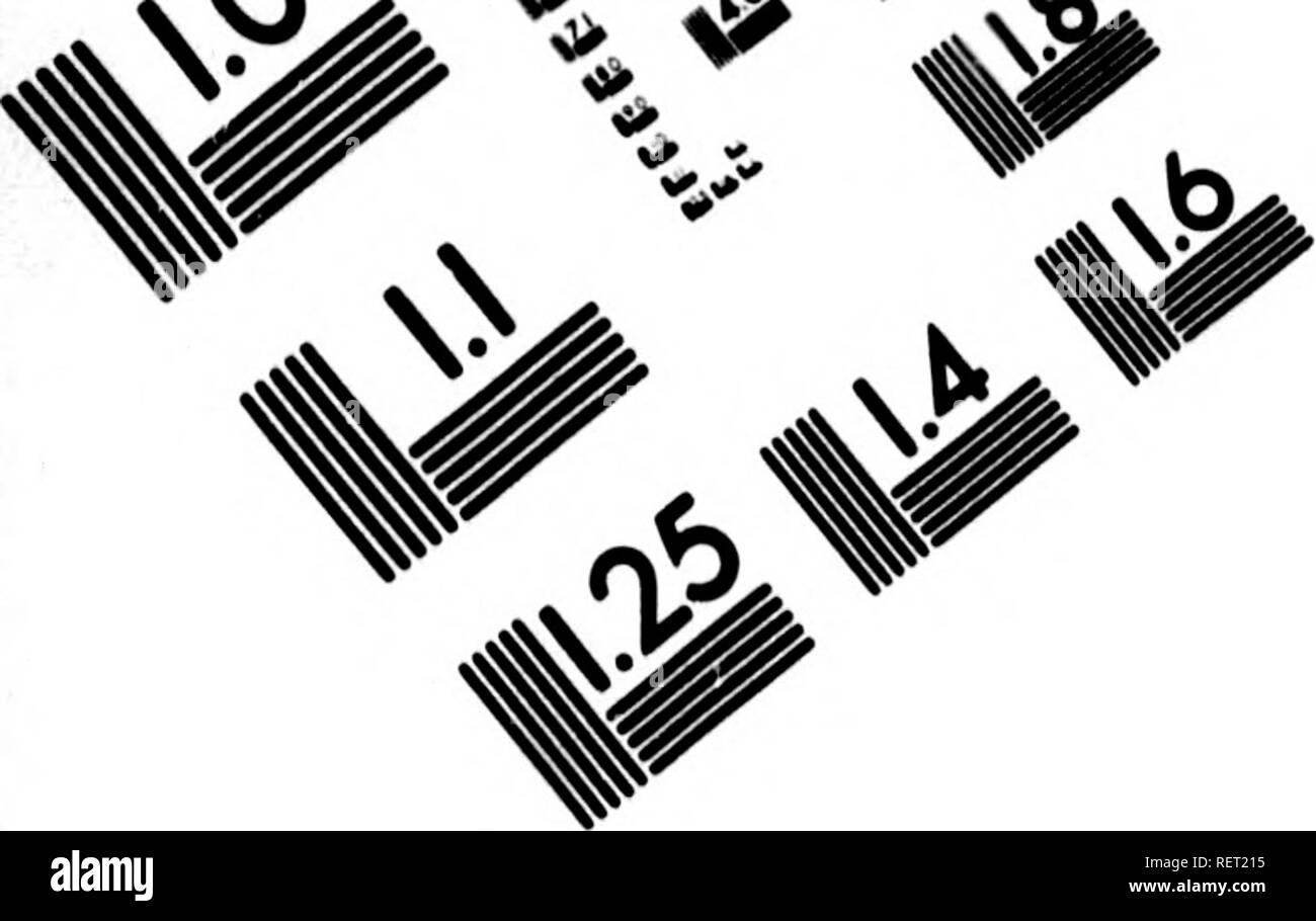 . Histoire naturelle, générale et particulière [microforme] : servant de suite à l'histoire des animaux quadrupèdes. Sciences naturelles; Natural history. ..>^. ^. IMAGE EVALUATION TEST TARGET (MT-3) // ^ *5^%. Please note that these images are extracted from scanned page images that may have been digitally enhanced for readability - coloration and appearance of these illustrations may not perfectly resemble the original work.. Buffon, Georges Louis Leclerc, comte de, 1707-1788. A Paris : De l'Imprimerie royale - Stock Image