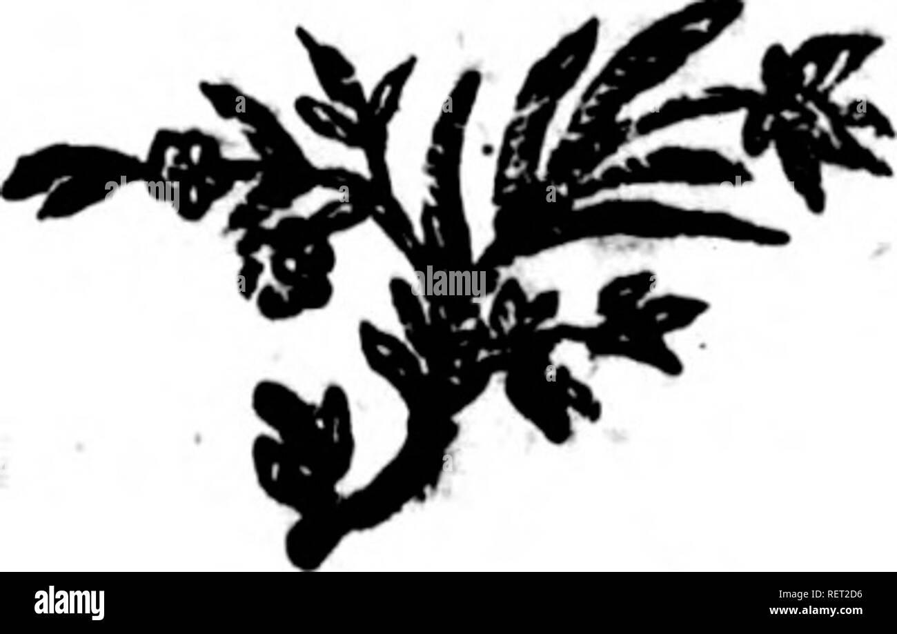 . Histoire naturelle, générale et particulière [microforme] : [s] ervant de suite à l'histoire naturelle de l'homme. Sciences naturelles; Natural history. Is s 9651 rra pas 1res. 2452 Dntre 1 â plus de 3 374- { 5 ans 4iP4 :ontre i us. 4^20 contre 1 lus. 477 i contre i plus» 4S55 contre i plus. 4S55 contre i )lus. » contre i îlus. 1 contre i plus. 1 fcontre i I Dus. I DE LA ris. S9i contre 22^1 ou i r^ contre i 22 qu'elle vivra 12 ans de plus. contre 240$ ou un peu plus de I contre i qu elle ne vivra pas 1 $ ans de plus. contre 1485 ou 2 H contre r qu'elle ne vivra pas i S ans de plus. co - Stock Image