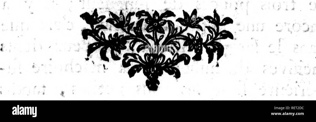 . Histoire naturelle, générale et particulière [microforme] : servant de suite à l'histoire des animaux quadrupèdes. Sciences naturelles; Natural history. 24 Supplément à VHiJloire ' > dans ce farigiie, eft brlin fur les jambes & les pieds, blanchâtre fur les doigts, & raye fur le corps de plufîeurs ban-r des brunes indécifes, une flir le dos juiqu auprès de la queue , & une de chaque côté du corps qui s'étend de raiflelle jufquaux cuiffes -, ie cou eft rouflatre depuis Toreille aux épaules, & cette couleur s'étend fous le ventre & domine par endroits fur p - Stock Image