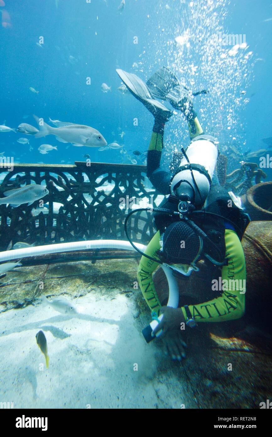Scuba divers permanently cleaning the Ambassador Lagoon, an 11 million liter aquarium with over 60000 fish, Atlantis Hotel - Stock Image