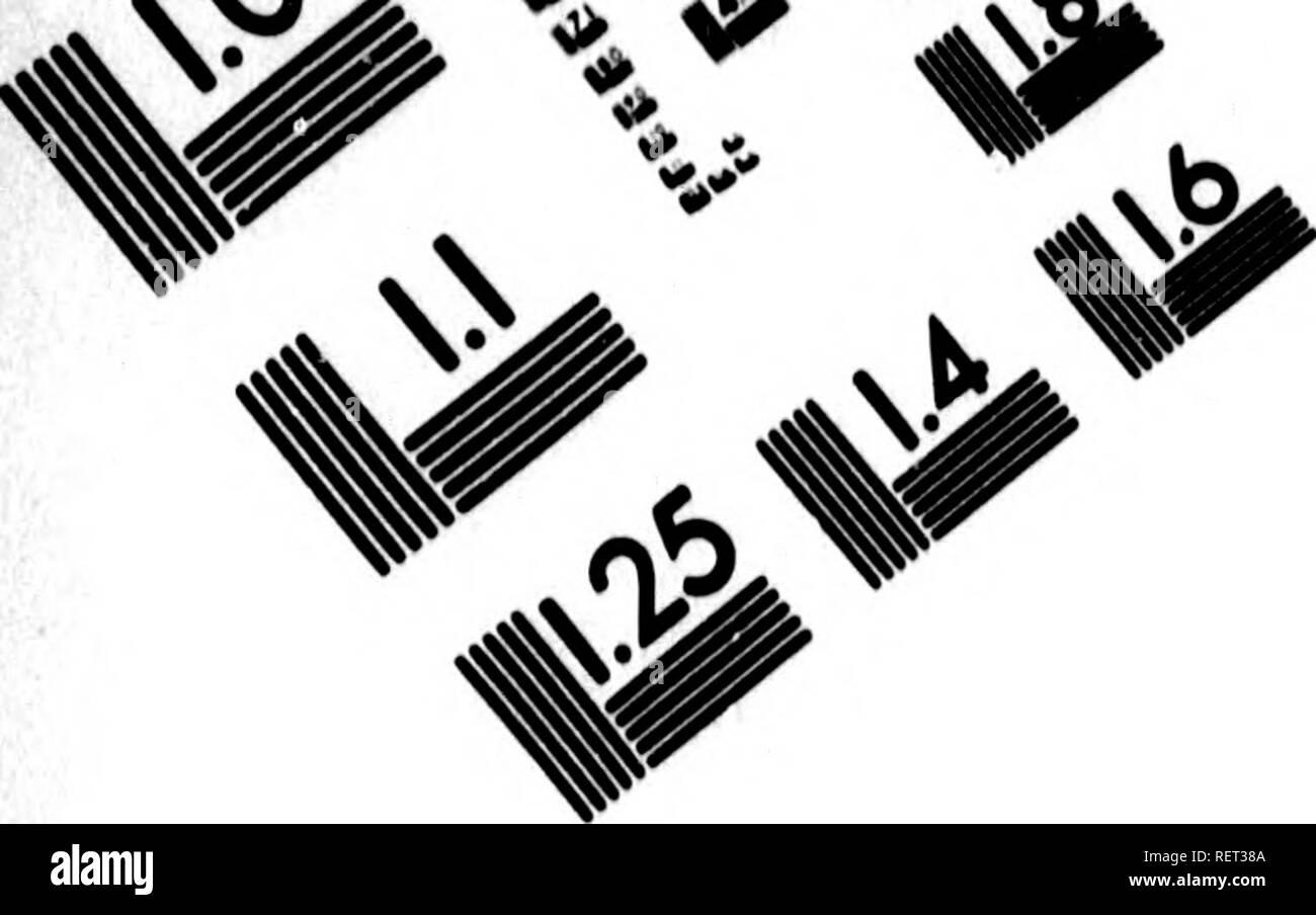 . Histoire naturelle, générale et particulière [microforme] : servant de suite à l'histoire des animaux quadrupèdes. Sciences naturelles; Natural history. s^.. IMAGE EVALUATION TEST TARGET (MT-3). Please note that these images are extracted from scanned page images that may have been digitally enhanced for readability - coloration and appearance of these illustrations may not perfectly resemble the original work.. Buffon, Georges Louis Leclerc, comte de, 1707-1788. A Paris : De l'Imprimerie royale - Stock Image