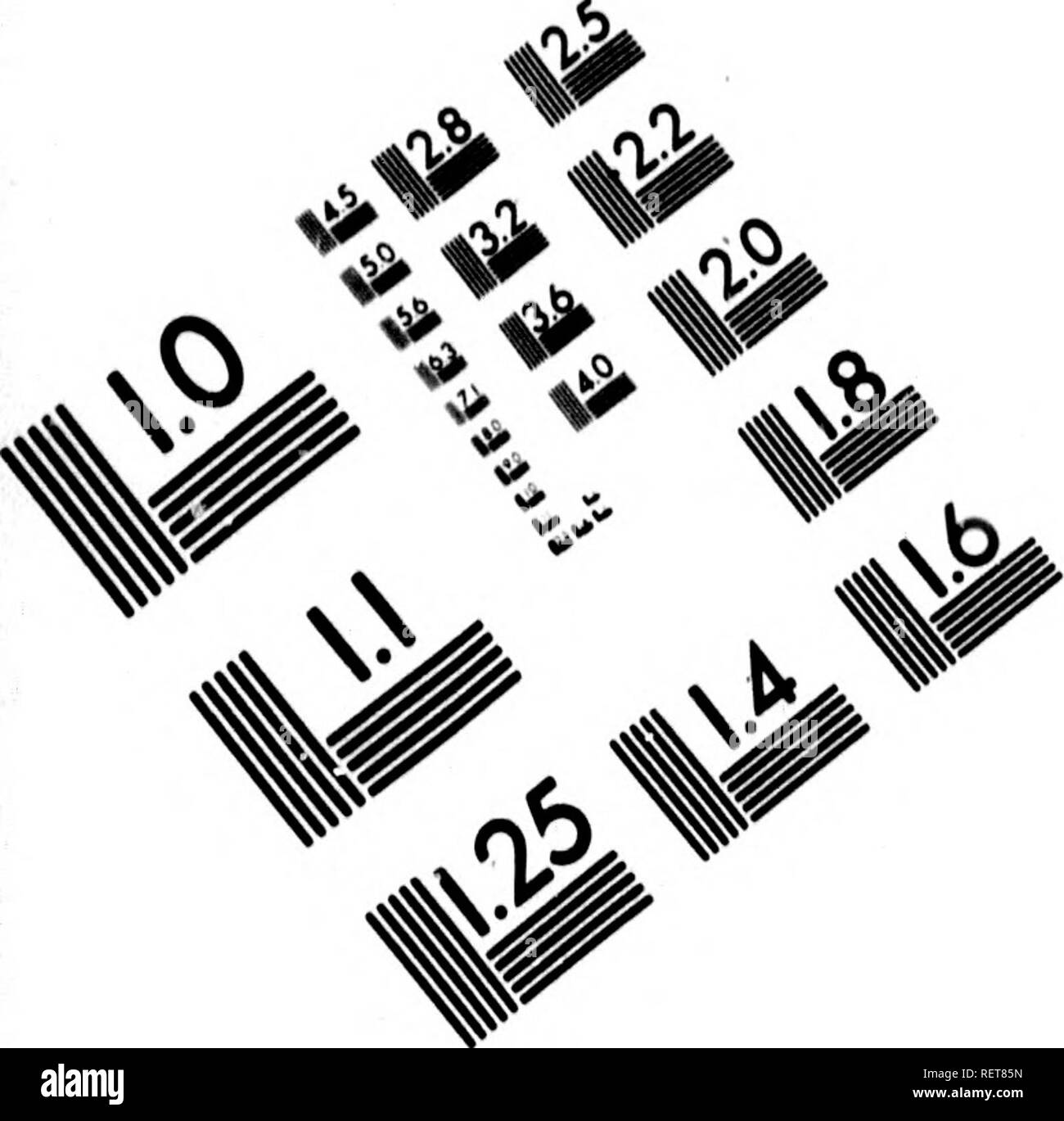 . Histoire naturelle de Buffon [microforme] : classée par ordres, genres et espèces, d'après le système de Linné avec les caractères géné riques et la nomenclature Linnéenne. Sciences naturelles; Ornithologie; Natural history; Ornithology. IMAGE EVALUATION TEST TARGET (MT-3) /. m ,!^ Piè. i< t/i 1.0 S.l 1.25 iââ IIIIM 1^ lâi 1 40 2.0 1.8 A. 111116 V] <^ /^ 7 ^. Please note that these images are extracted from scanned page images that may have been digitally enhanced for readability - coloration and appearance of these illustrations may not perfectly resemble the original work.. Castel,  - Stock Image