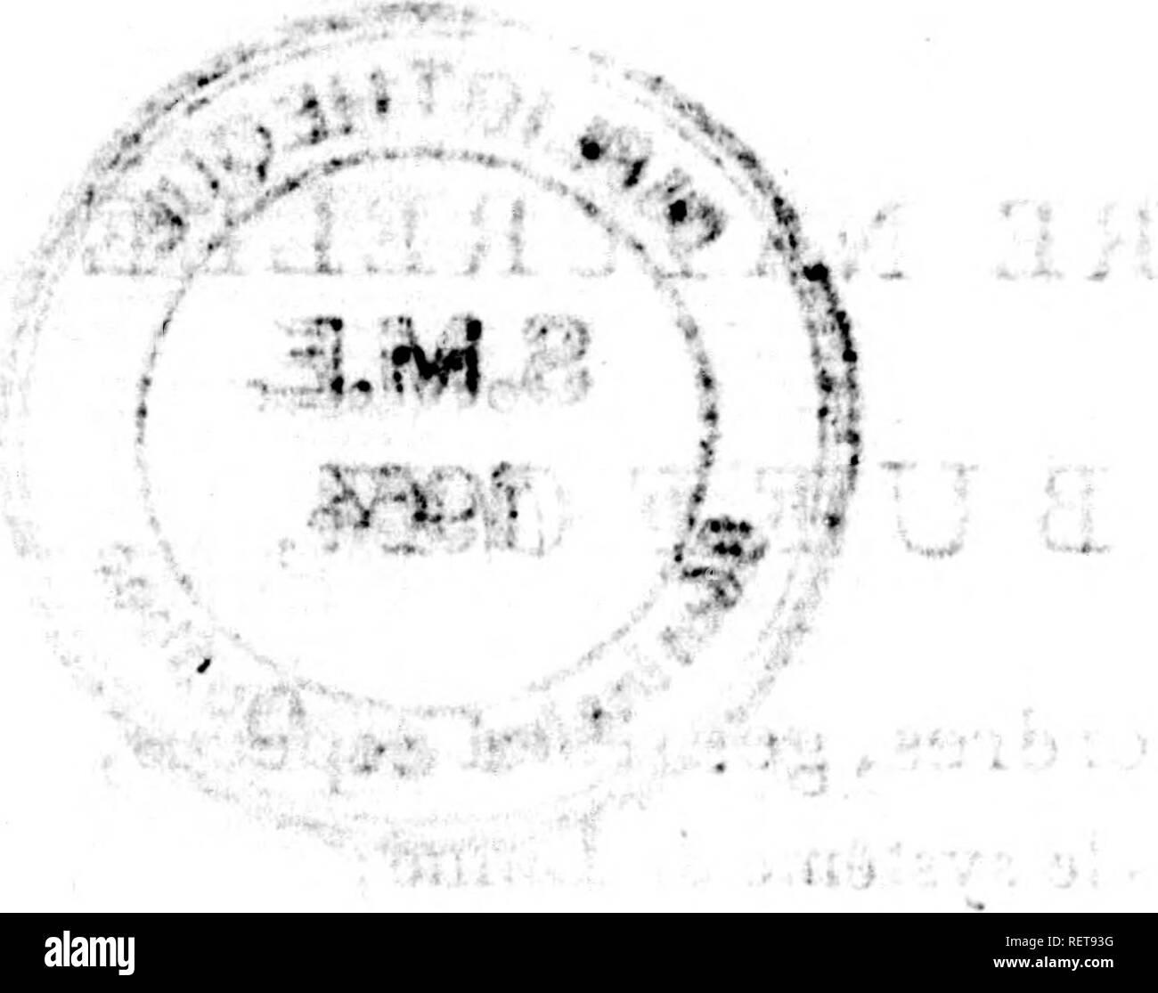""". Histoire naturelle de Buffon [microforme] : classée par ordres, genres et espèces, d'après le système de Linné avec les caractères géné riques et la nomenclature Linnéenne. Sciences naturelles; Ornithologie; Natural history; Ornithology. r*^ """" â """"*⢠»*'â¢?»â¦'» """" ' â > â . â¢. f. » .. â r, ,.f , ,j.. """"l f â¢*. '/-it.' .^â¢.Â«Â«fÂ«Â«(i.. , 3l*U-.;îi' -'i/'l ^.. *'.- H â > 't. t ; .il. ; * /â t » .U 4 .* . ' .*J^» ,..â¢*,Â« i !â - i , (.. Please note that these images are extracted from scanned page images that may have been digitally enhanced for rea - Stock Image"""