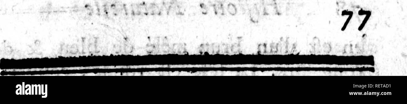 """. Histoire naturelle, générale et particulière [microforme] : servant de suite a l'histoire des animaux quadrupedes. Sciences naturelles; Natural history. A: n. â ^i ç. â ^-:iL^K'^'' ;^*'^:^'. """" â¦*ii#. LA G ÃENON VI r -.*^ !iP>^'' .V ..jw*'?â '.â¢>',;/ VjEttE 6UEN0>^ oli fînge h. longue queue ^ nous a été envoyée des granoes Indes, * & n'étoît connue d'aucun naturalifte, quoique très^remarquable par un trait ap- parent , & qui n'appartient à aucune des autres efpèces dé guenons, ni même à aucun autre animal j ce trait eft un nez large proéminetit, affez  - Stock Image"""