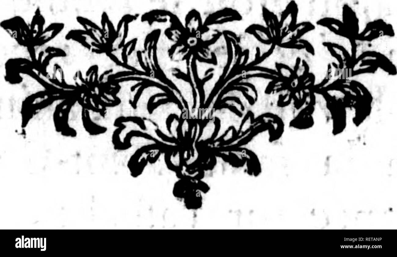 . Histoire naturelle, générale et particulière [microforme] : servant de suite à l'histoire des animaux quadrupèdes. Sciences naturelles; Natural history. des Animaux quadrupèdes. 7 j pouces & demi ou cinq pouces > font d% quatre couleurs dans leur longueur, d'un brun-clair depuis Torigine jufqu'à près de la moitié, enfuite fauve-clair, puis noirs près de rextrémité qui eflblandie, le deflbus du corps eft couvert de poils blancs-, les jambes font auflfi couvertes de longs poils d'un brun mufc-foncé -, les pieds de devant n ont que quatre doigts & ceux de derrière cinq. L - Stock Image