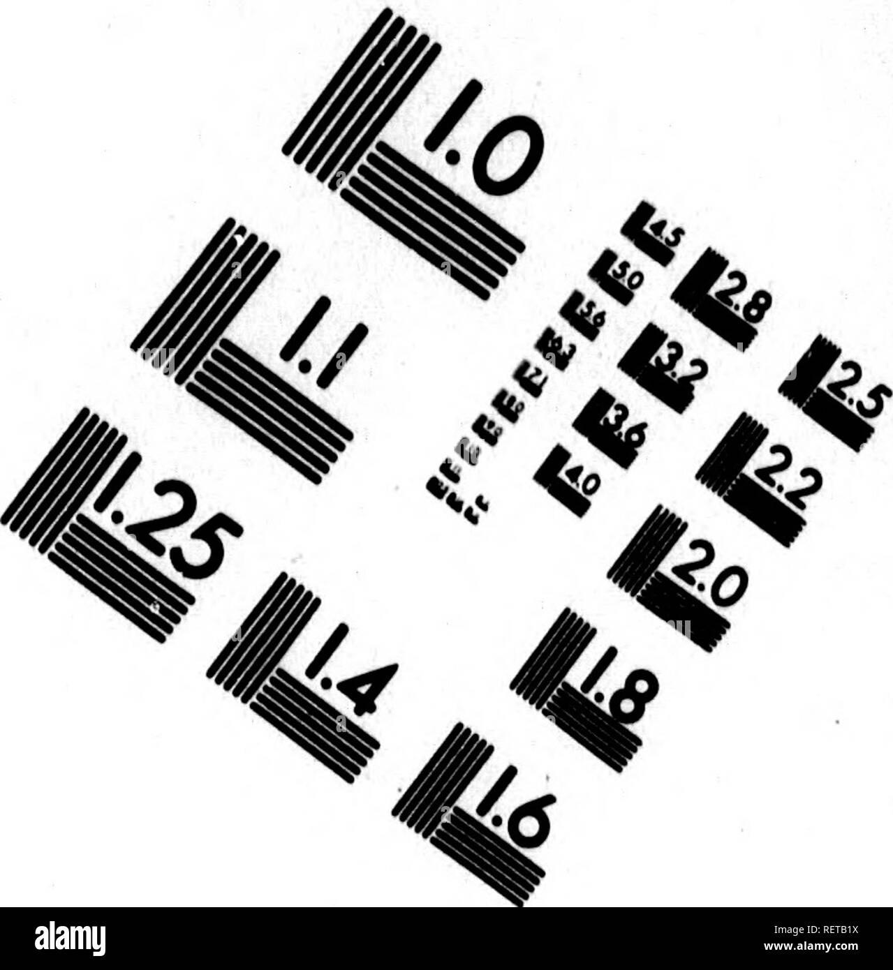 . Histoire naturelle, générale et particulière [microforme] : servant de suite à l'histoire des animaux quadrupèdes. Sciences naturelles; Natural history. (MAGE EVALUATION TEST TARGET (MT-3). 1.0 l.l 11.25 UÃ|28 |25 â 2.2 Mil. Please note that these images are extracted from scanned page images that may have been digitally enhanced for readability - coloration and appearance of these illustrations may not perfectly resemble the original work.. Buffon, Georges Louis Leclerc, comte de, 1707-1788. A Paris : De l'Imprimerie royale - Stock Image