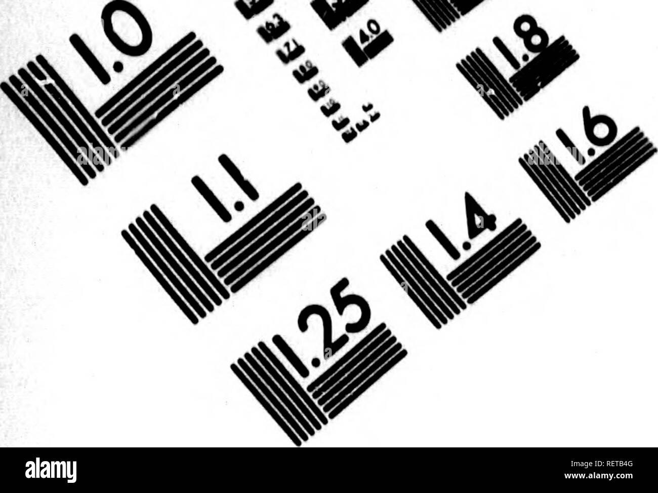 . Histoire naturelle, générale et particulière [microforme] : servant de suite à la théorie de la terre, & d'introduction à l'histoire des miné raux. Sciences naturelles; Natural history. ^, <fz^.. IMAGE EVALUATION TEST TARGET (MT-3). Please note that these images are extracted from scanned page images that may have been digitally enhanced for readability - coloration and appearance of these illustrations may not perfectly resemble the original work.. Buffon, Georges Louis Leclerc, comte de, 1707-1788. A Paris : De l'Imprimerie royale - Stock Image