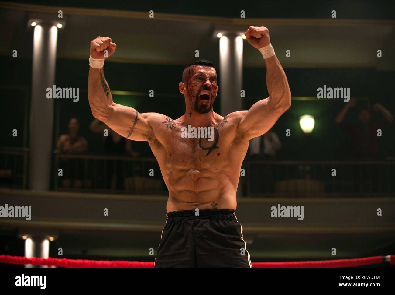 SCOTT ADKINS BOYKA: UNDISPUTED IV (2016) Stock Photo