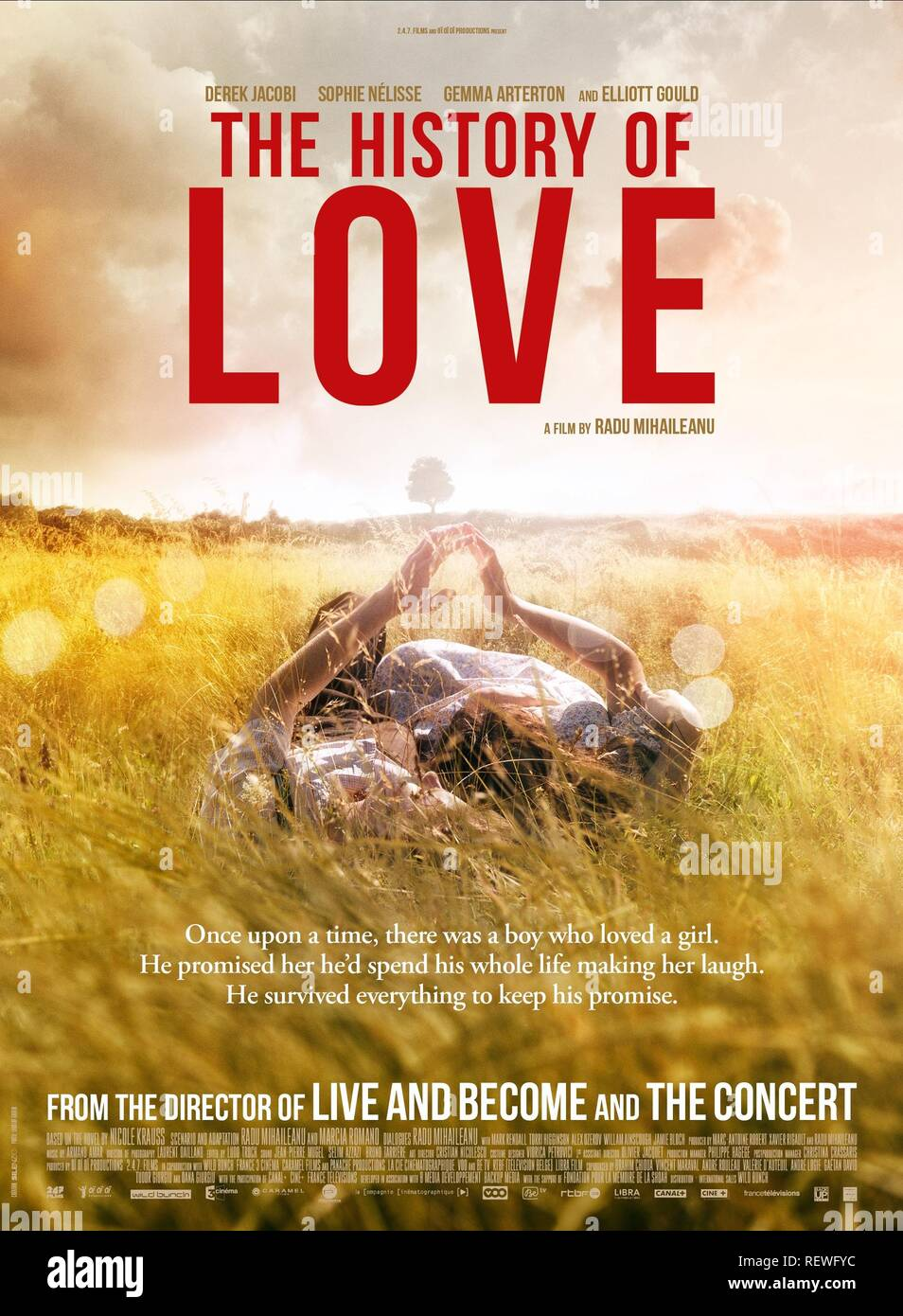MOVIE POSTER THE HISTORY OF LOVE (2016) - Stock Image