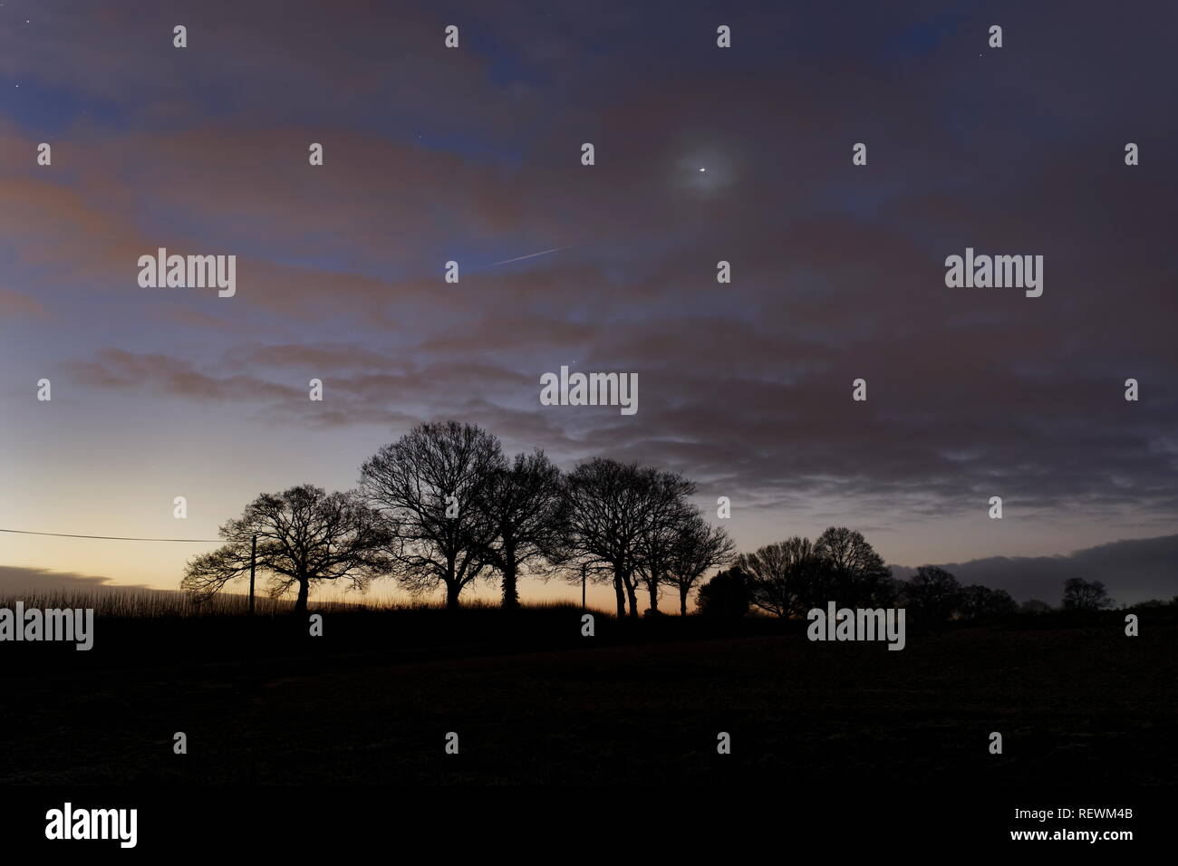 Venus shines through an early morning veil of cloud as dawn rises agianst distant trees Oakley Hampshire - Stock Image