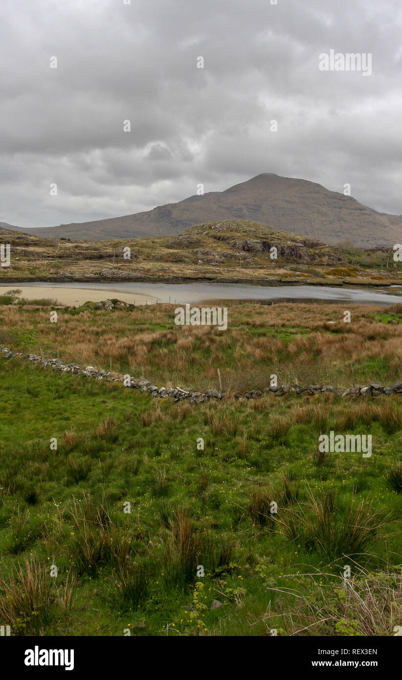 Stone wall in field in west of Ireland with County Mayo countryside and Mweelrea in background. - Stock Image