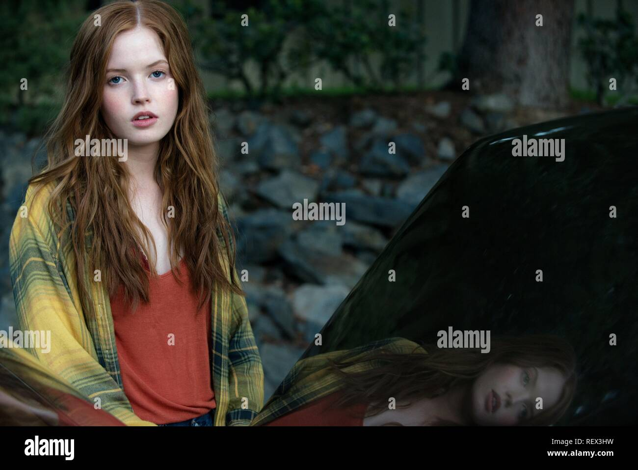 ELLIE BAMBER NOCTURNAL ANIMALS (2016) - Stock Image