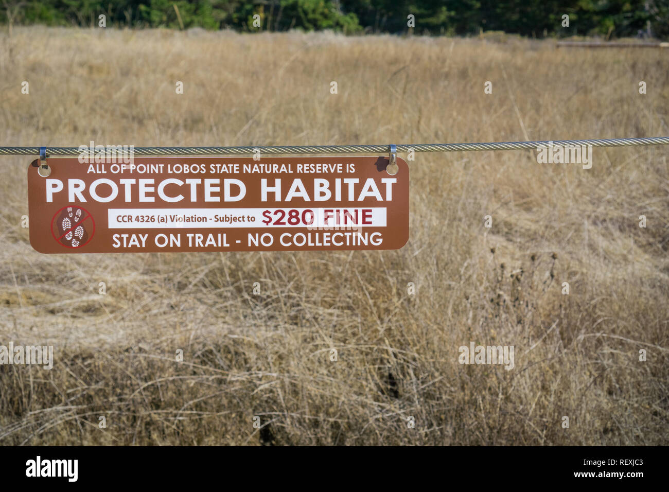 November 5, 2017 Carmel-By-The-Sea/USA - 'Protected Habitat, Stay on trail - no collecting' sign in Point Lobos Stare Reserve, a marine reserve near M - Stock Image