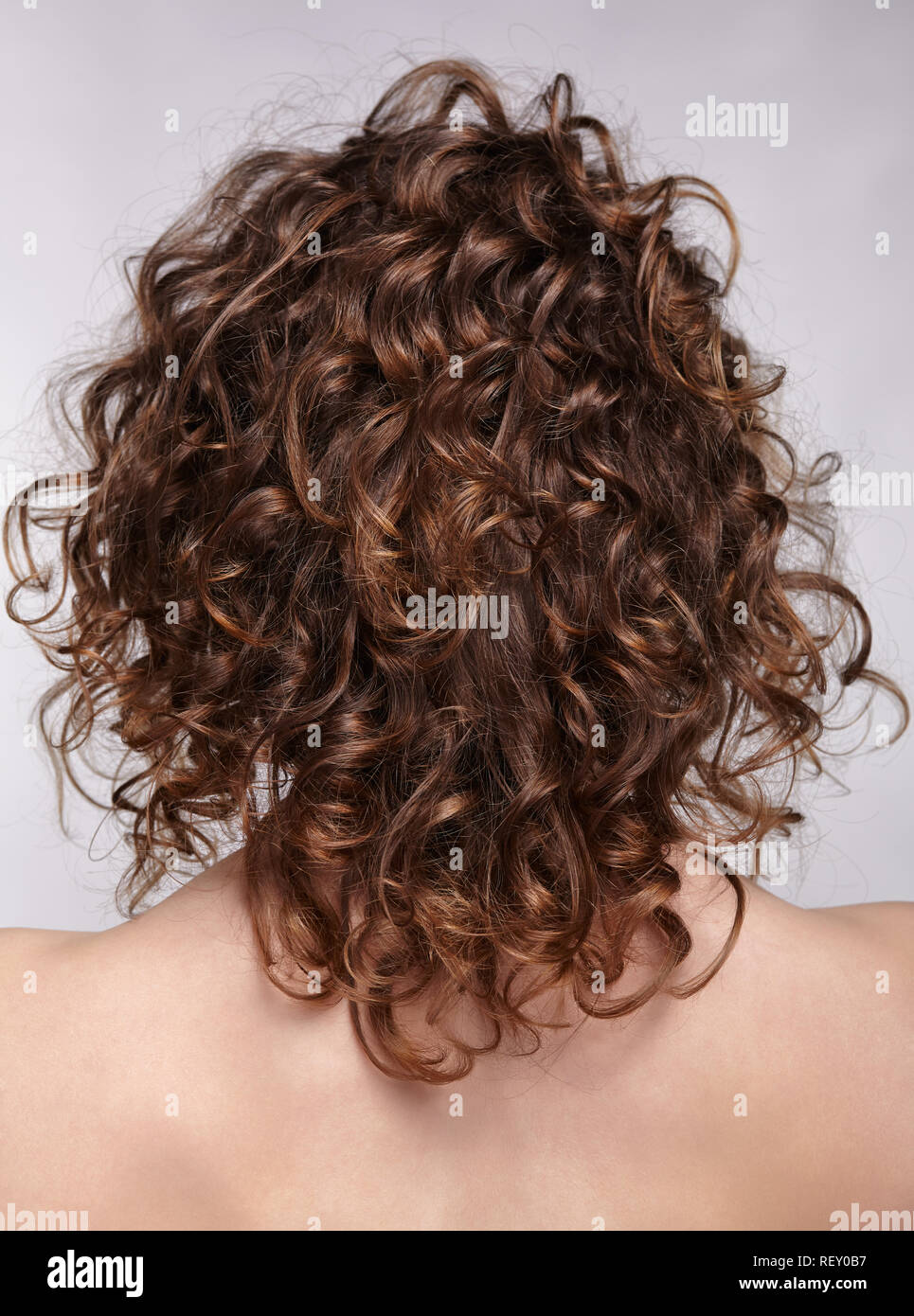 Woman from backside on gray background. Female with curly hair. Stock Photo