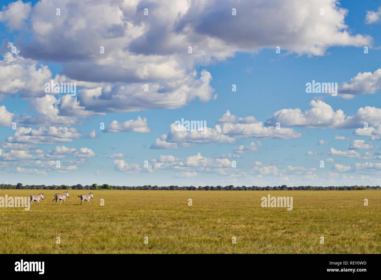Chikuni Plains Stock Photos & Chikuni Plains Stock Images - Alamy