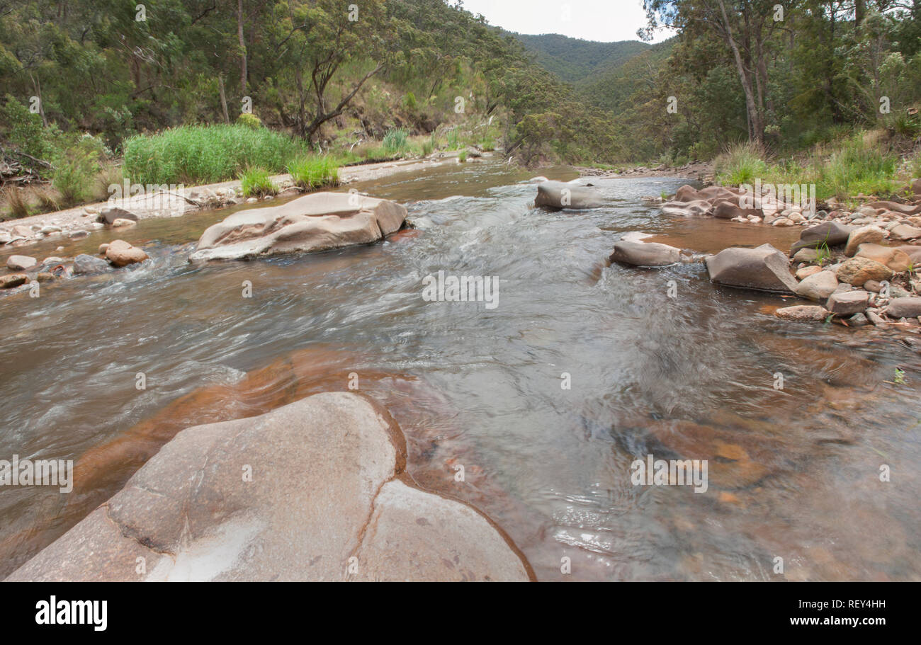 Creek in the Victorian High Country, Victoria, Australia - Stock Image