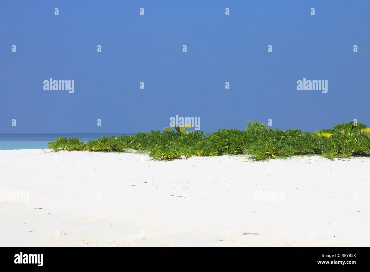 Desert island in Maldives (Ari Atoll) - Stock Image