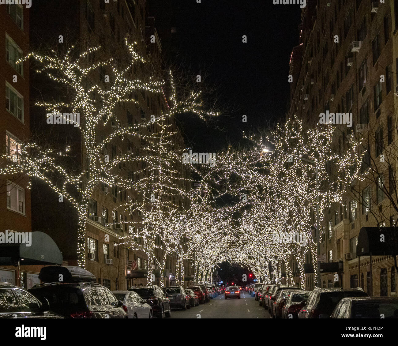 New York Usa 22 January 2019 Trees Are Adorned With Lights In A