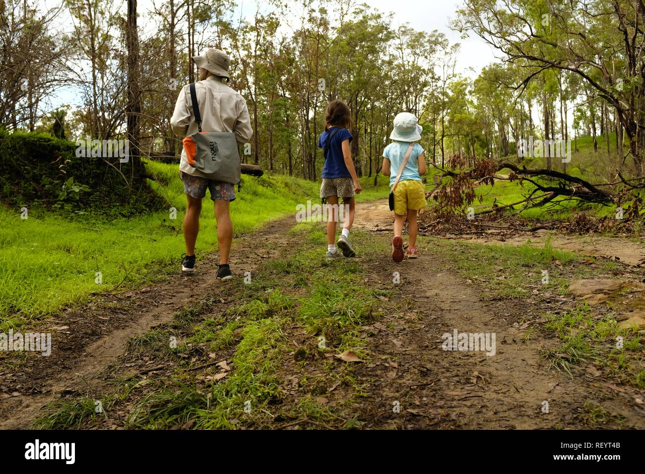 Children and father walking along a four wheel drive track through a forest, Mia Mia State Forest, Queensland, Australia Stock Photo