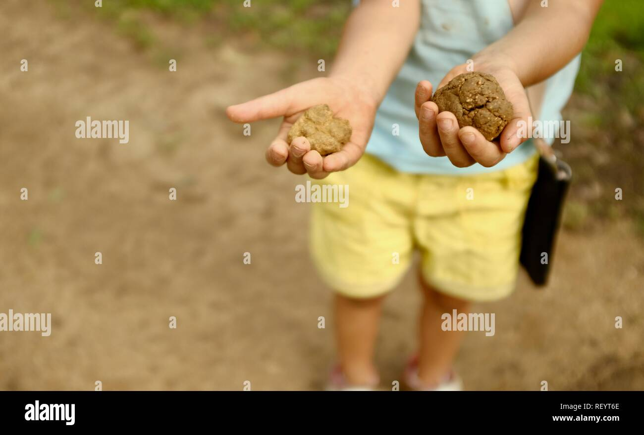 A child holding out balls of mud in her hands, Mia Mia State Forest, Queensland, Australia - Stock Image