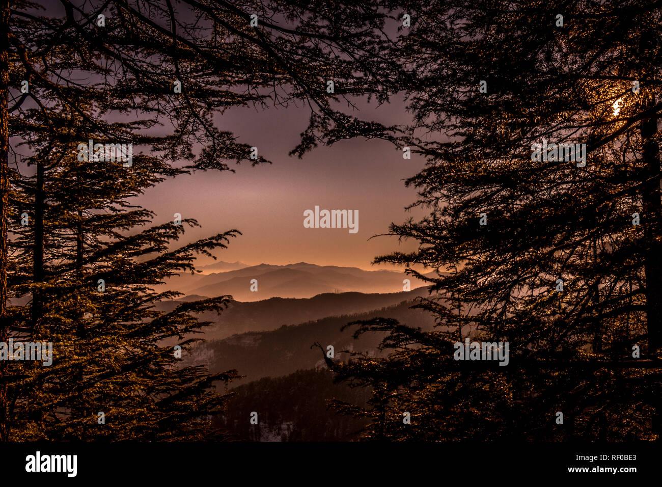 The morning raga! Stock Photo