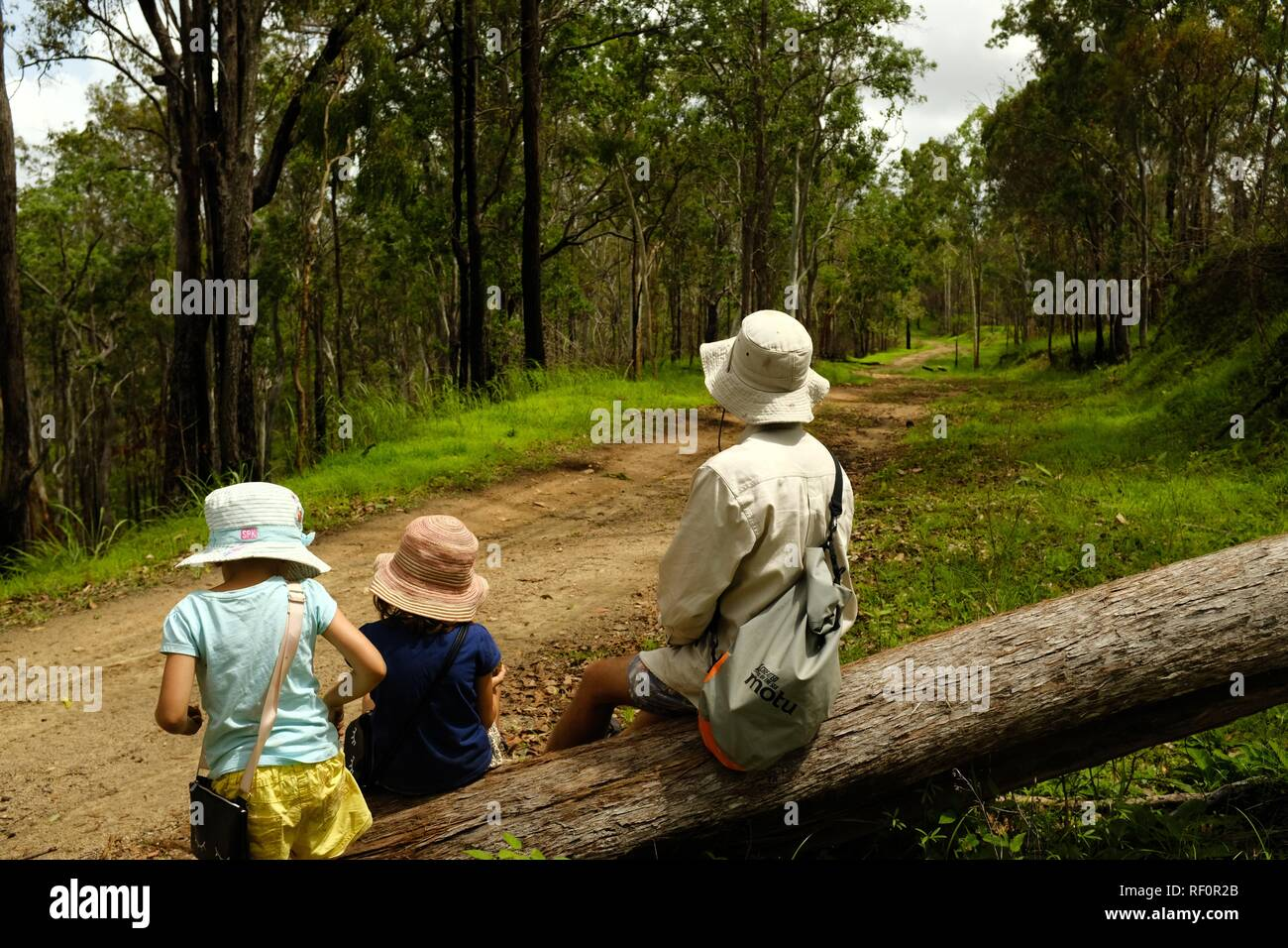 Children spending time with their father outdoors in a forest, Mia Mia State Forest, Queensland, Australia - Stock Image