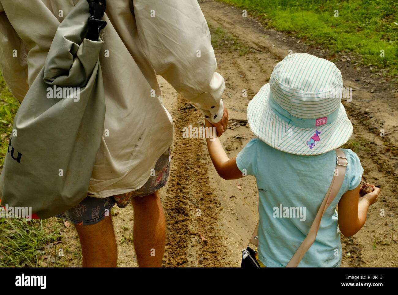Father and daughter holding hands while walking outdoors in a forest, Mia Mia State Forest, Queensland, Australia - Stock Image
