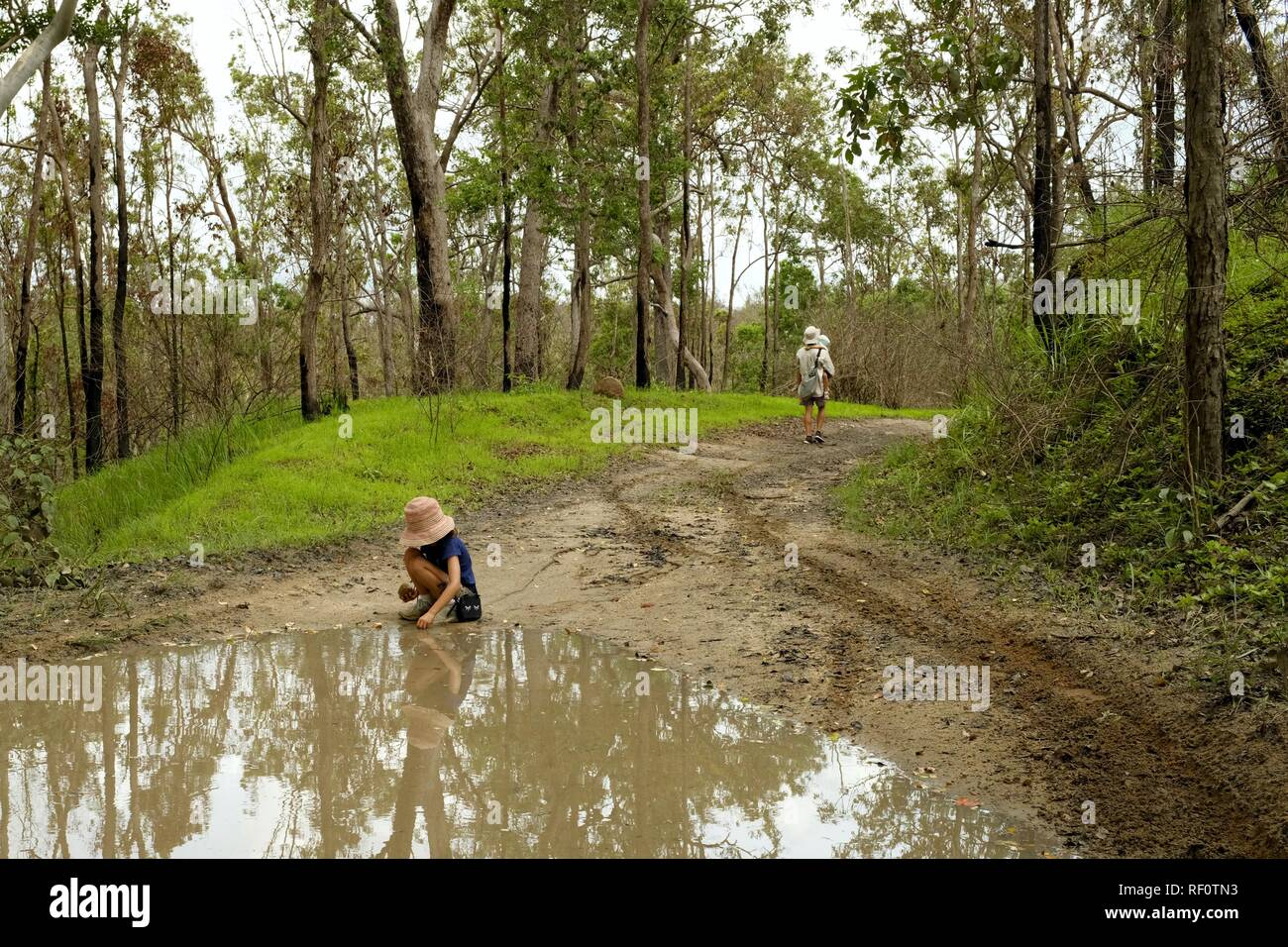 A child plays in a muddy puddle along a four wheel drive track through a forest, Mia Mia State Forest, Queensland, Australia Stock Photo
