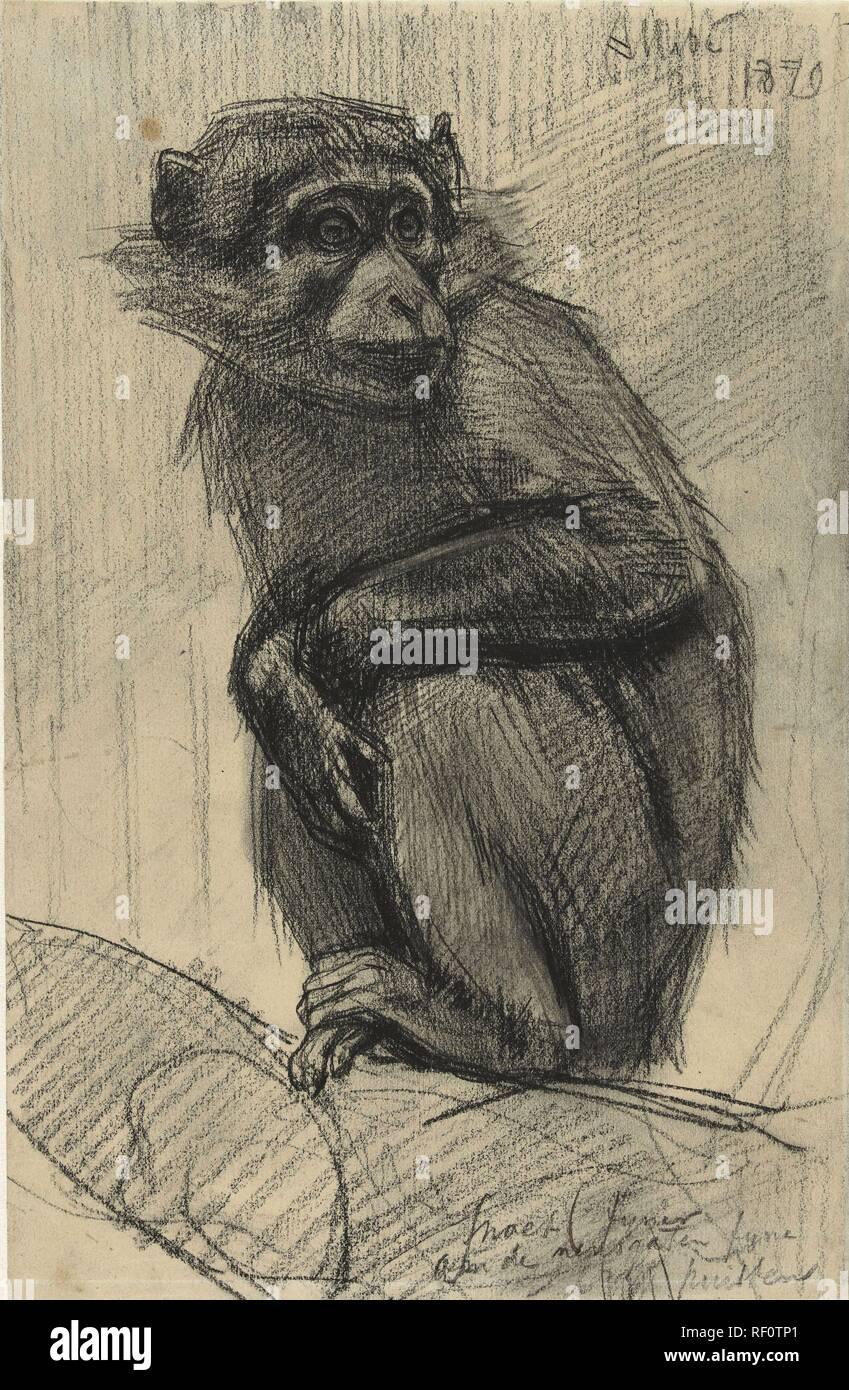 dating ape