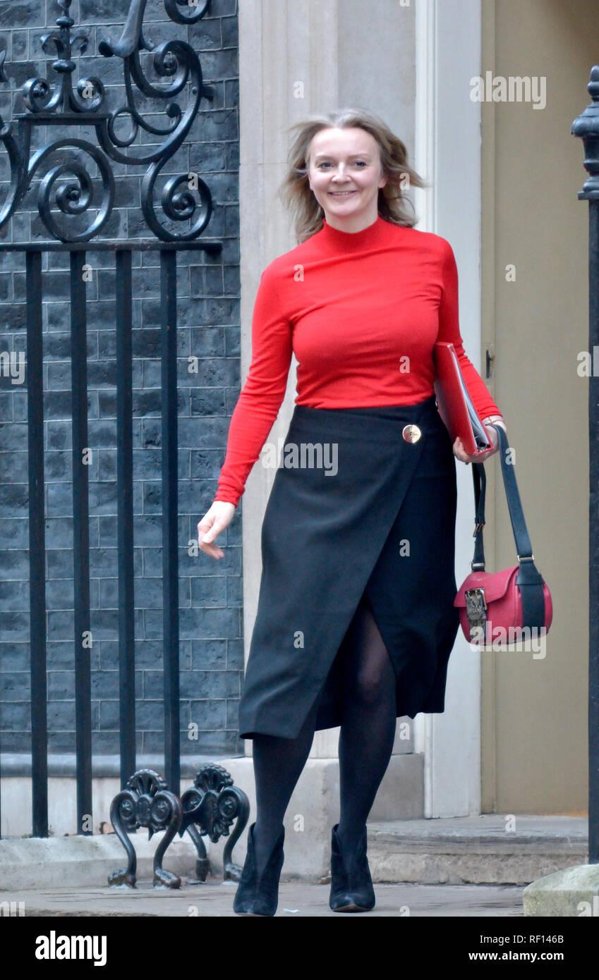 Liz Truss MP, Chief Secretary to the Treasury, leaving ...