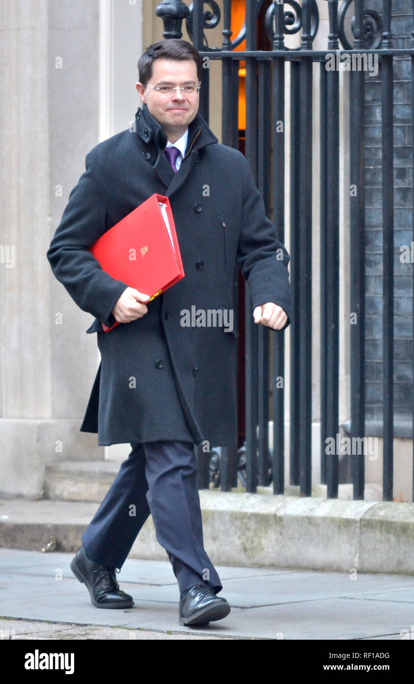 James Brokenshire MP, Secretary of State for Housing, Communities and Local Government, leaving Downing Street after a cabinet meeting 22.01.2019 - Stock Image