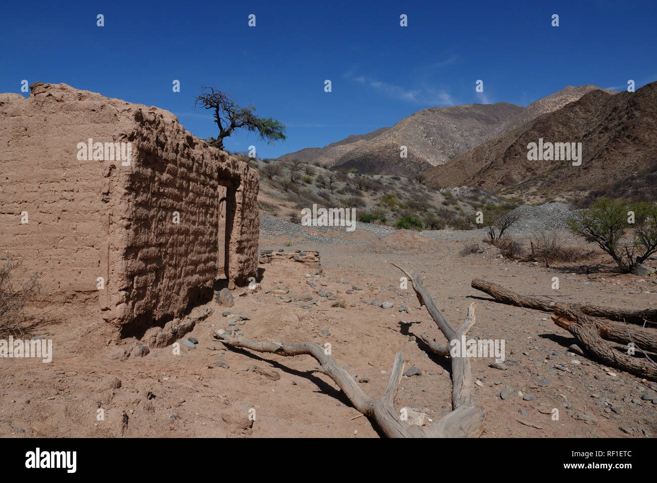 Abandoned adobe dwelling on the RN40 road between Cachi and Cafayate made famous by Che Guevara in his Motorcycle Diaries. - Stock Image