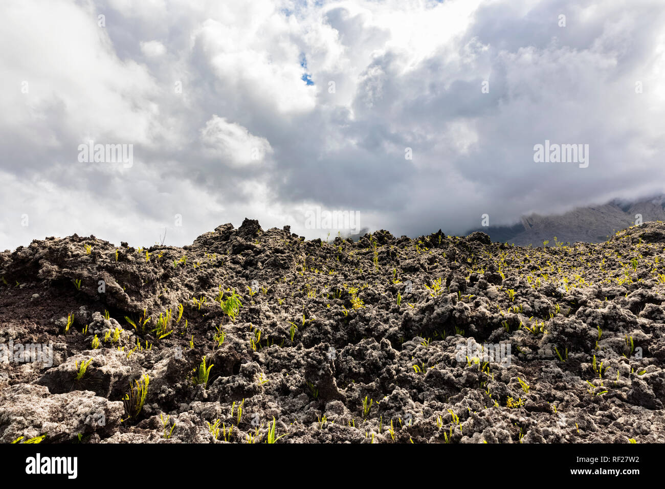 Reunion, Piton de la Fournaise, Grand Brule, Lava field - Stock Image