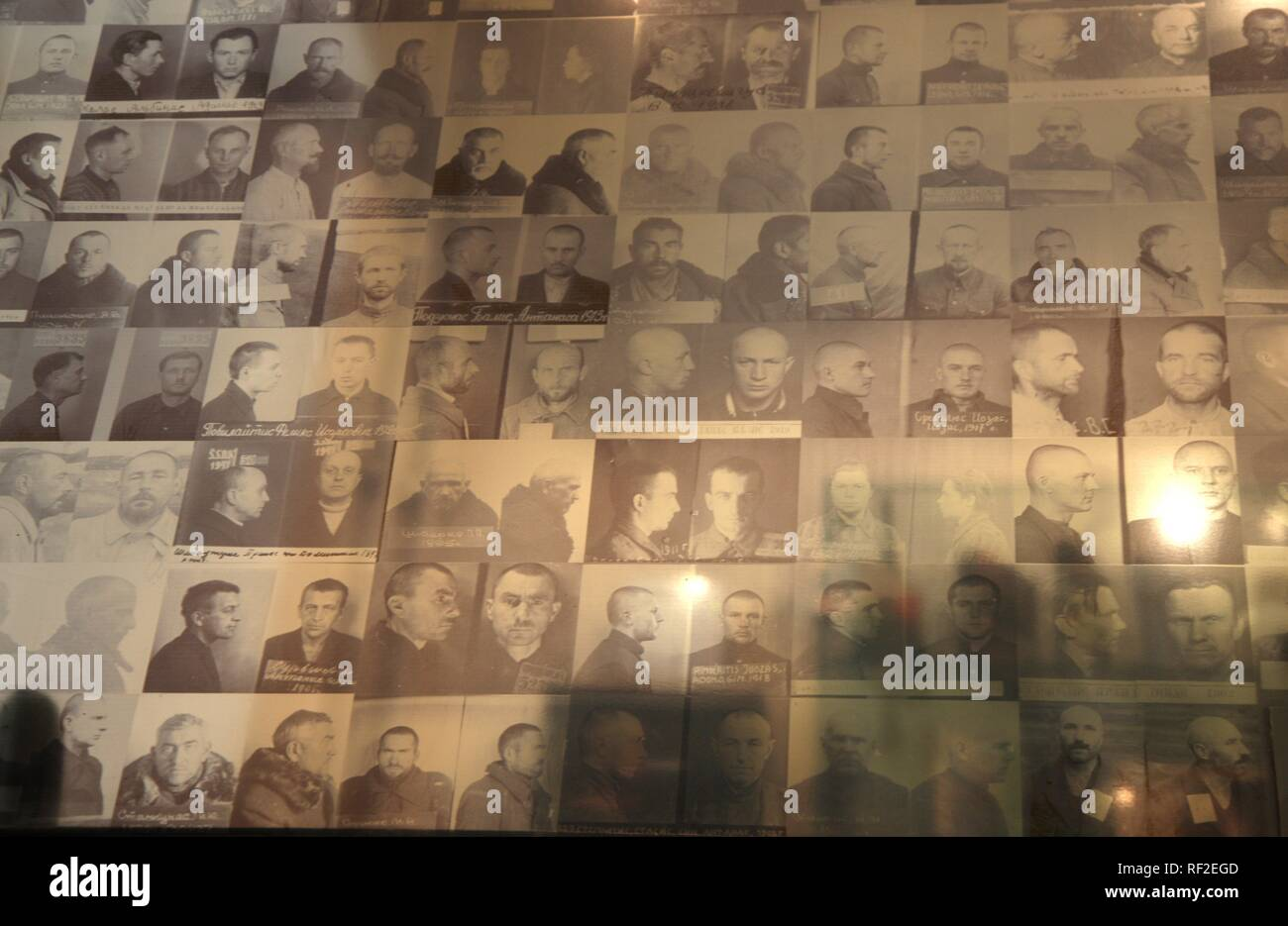 Photos in the KGB Museum, Genocide Museum, dealing with the periods of German and Soviet occupations and genocide, Vilnius - Stock Image